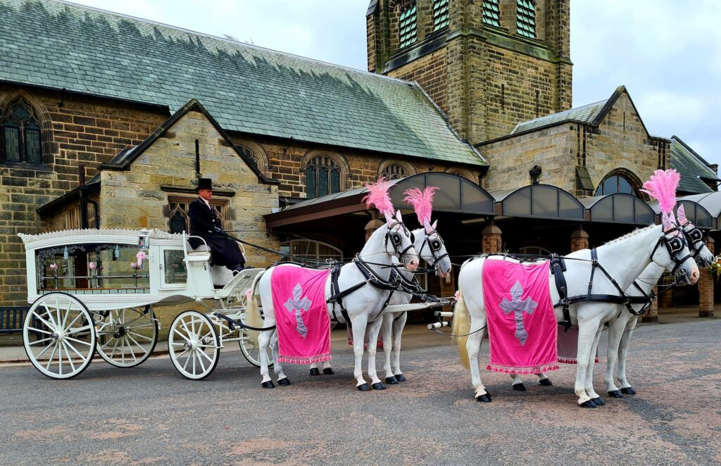 We Can Offer A Range Of Colours For a Horse Drawn Funeral